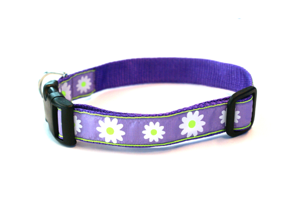 Lavender Daisy Dog Collar
