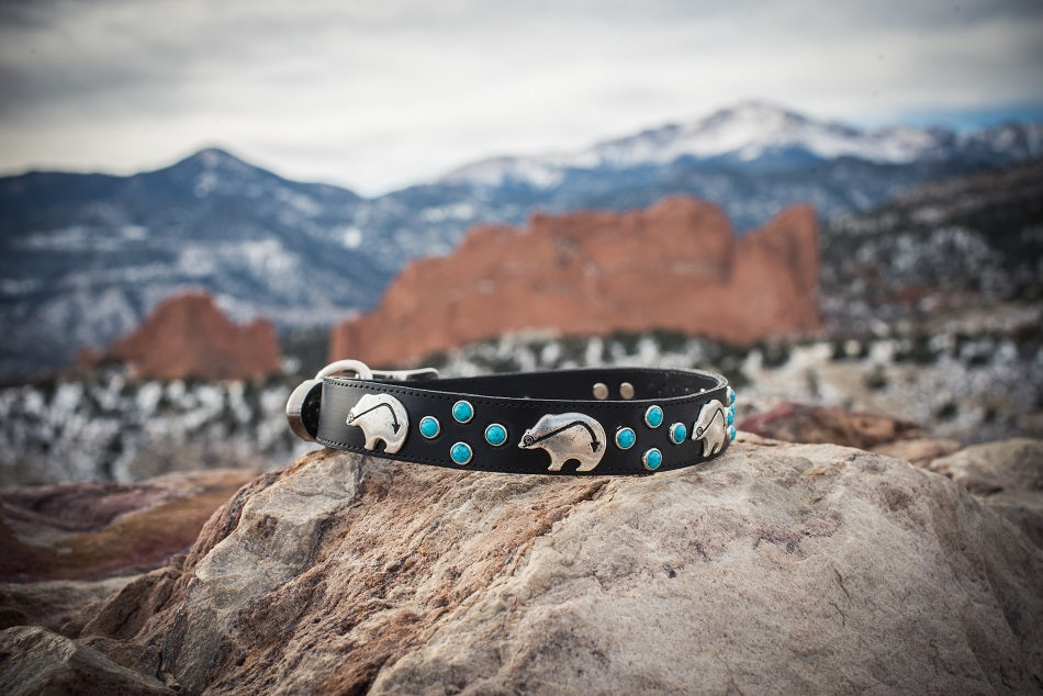 Black Leather and Turquoise Dog Collar