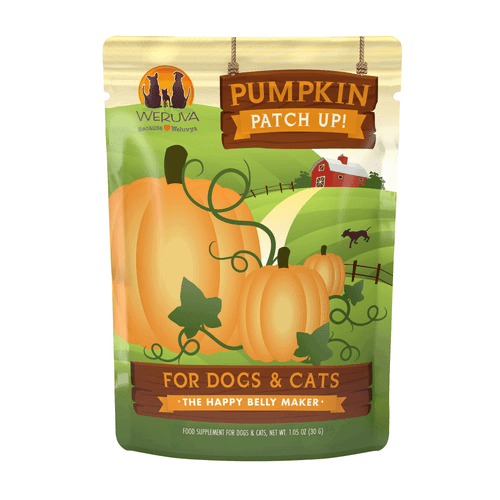 Pumpkin Treats for Dogs and Cats