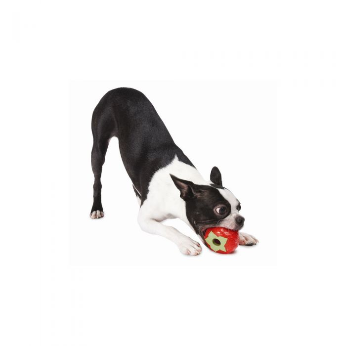 Planet Dog Orbee Tuff Strawberry Toy