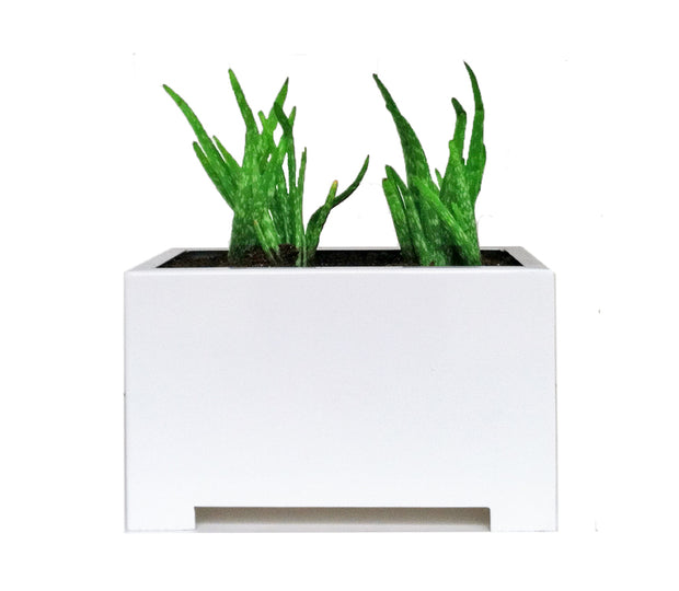 Alora White Rectangle Planter - Architectural Planters - Modern Indoor and Outdoor Planter Box