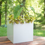 NMN Designs - Madeira Cube Planter - Brushed Metal Finish -  Outdoor Metal Square Planter