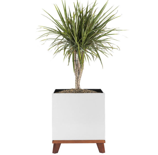 Madeira Cube Planter with Base