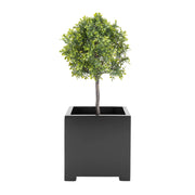 Alora Cube Planter - Architectural Planter Square Box for Small Trees