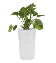Carmen Planter by NMN Designs - Tall White Plant Container - Cone Shaped Planter - Fiberglass Plant Container - Commercial, Residential Planter
