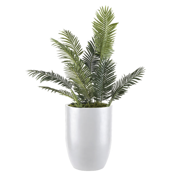Bell planter modern extra large in white for large plants and trees with plant