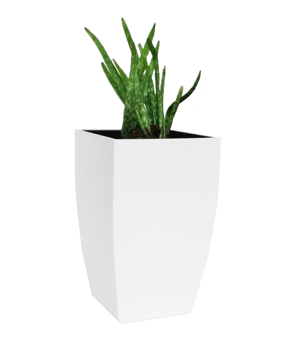 NMN Designs Madeira Cubica Stainless Steel Planter White Modern