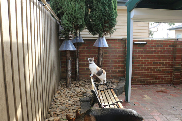 Oscillot cat fence containment solution and tree guards for additional cat proofing