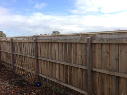 Oscillot cat containment system (Merino) on timber fence with brackets and polycarbonate