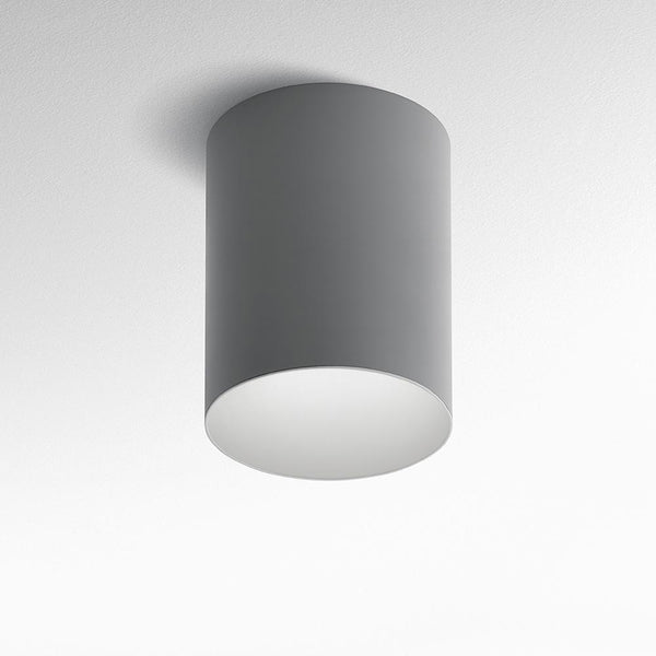 Tagora 270 ceiling CFL grey/white