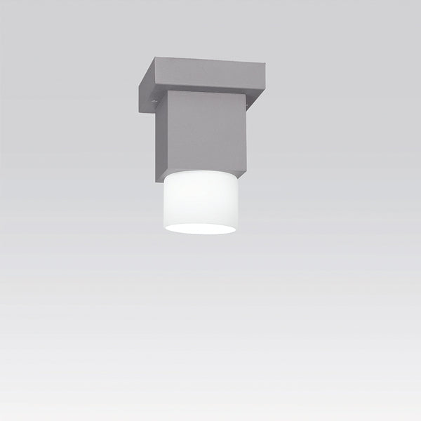 Dupla ceiling HAL 1x35W Grey/White