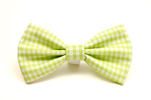 Bright Green Gingham Dog Bow Tie