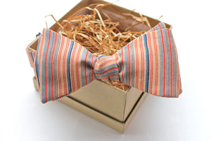 Salmon & Navy Striped Bow Tie