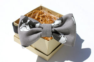 Boston Terrier Denim Bow Tie
