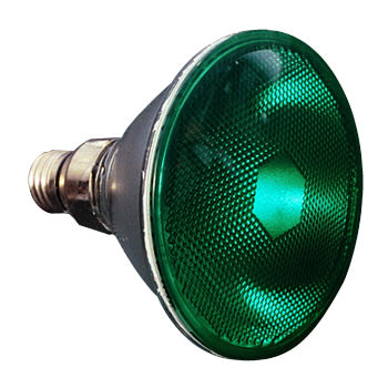PAR38 Green 90W FL Colored Light Bulb #10723