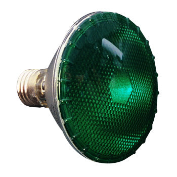 PAR30 Green 75W FL Colored Light Bulb #10713