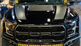 17-Current Ford Raptor SDHQ Built Fiberglass Fenders Fiberglass SDHQ Off Road