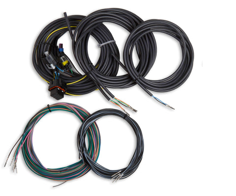 Holley EFI Digital Dash Wiring Harness Performance Holley Performance