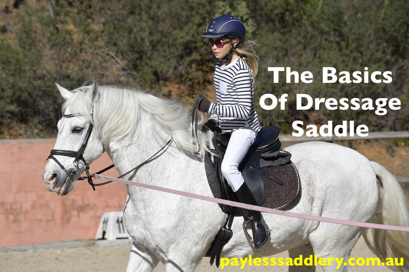 The Basics Of Dressage Saddle