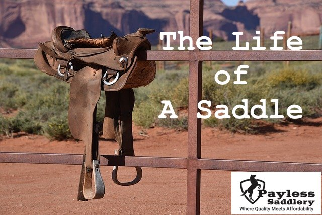 The Life of a Saddle