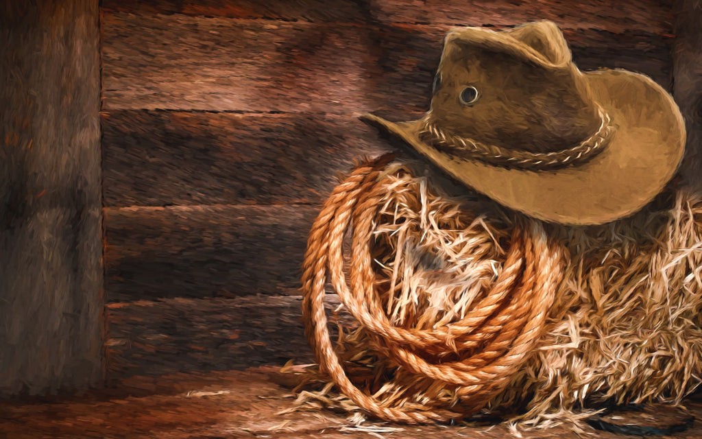 What is Lasso Rope (Also Known as Lassoo) ?