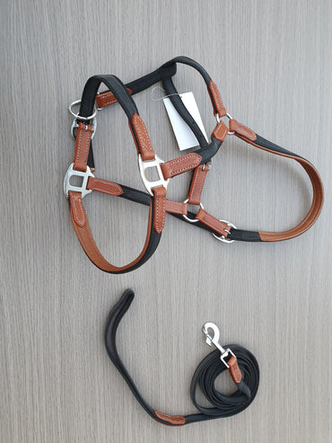 Tan Leather - Webbing Halter and lead set