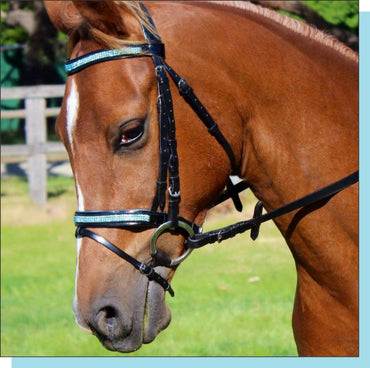 Blue Crystal Leather Bridle With Webb / Leather Reins