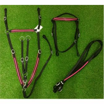 Pink Accent-Braided Pattern-Leather Bridle-Breastplate and Reins set