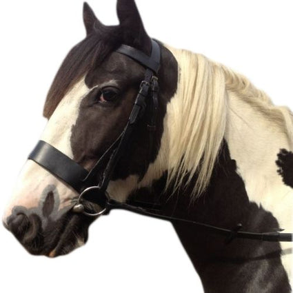 Black Leather - Working Hunter Bridle -  2 Inch Nose band