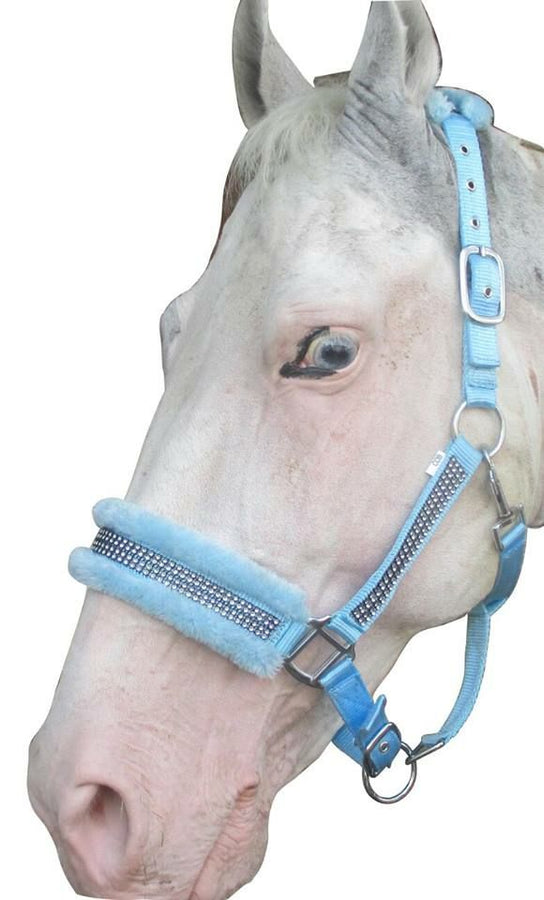 Babyblue-Crystal- Mink PP Halter and lead set
