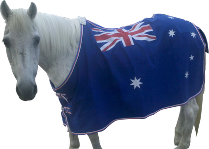 Australian Flag  Cotton Canvas Rug