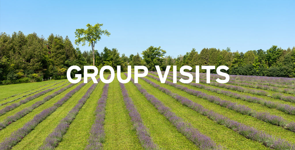 Terre-Bleu-Group-Visits