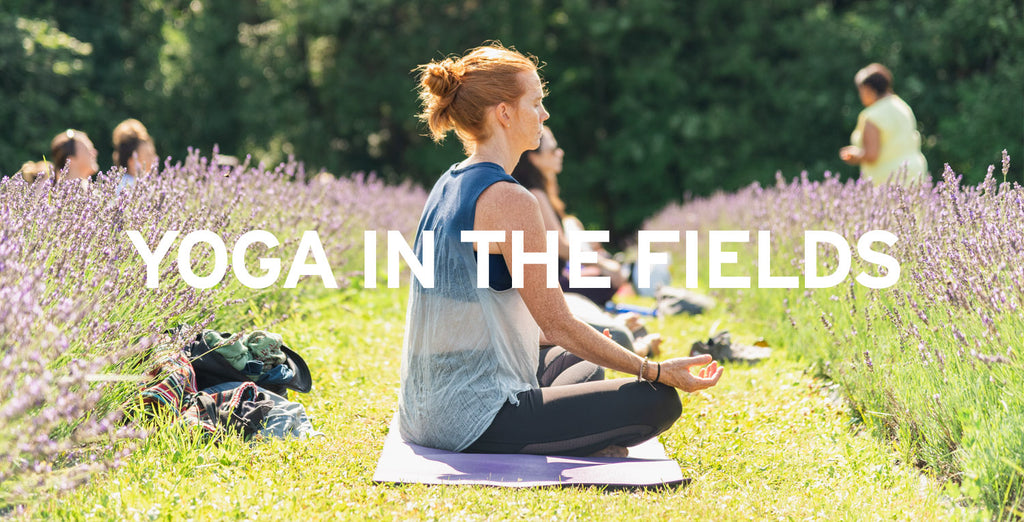 Terre-Bleu-Yoga-In-The-Fields