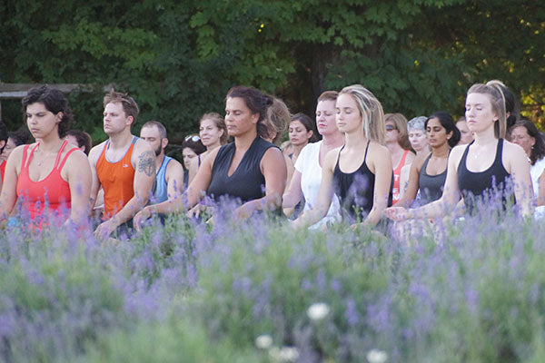 Yoga Class in the Lavender Fields