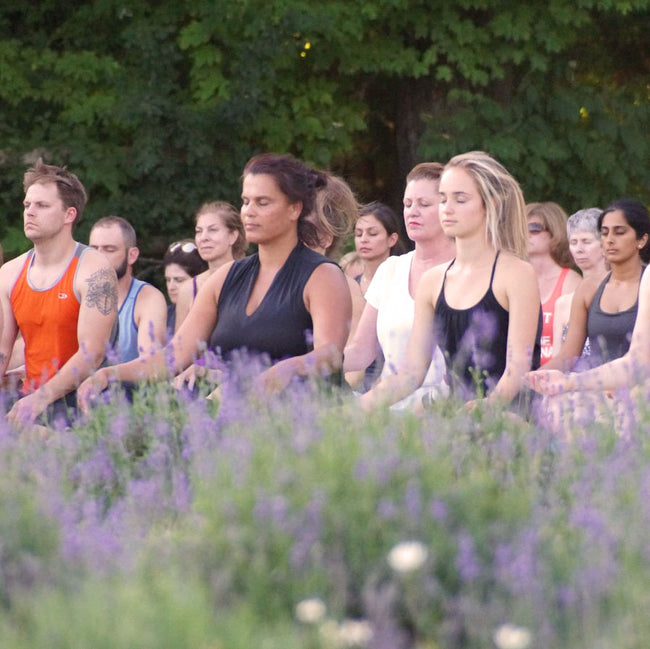 Yoga in the Fields Digital Pass