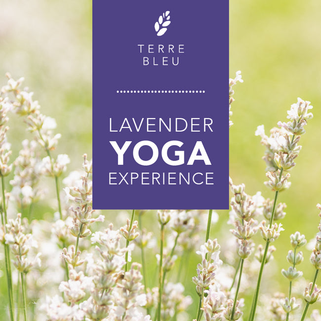 Yoga Pass 2020 - Yoga in the Lavender Fields