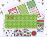 WATERMELON MONTHLY Layout Planner Stickers | Rose Lime