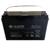 Battery (12 volt, 100 amp-hour)