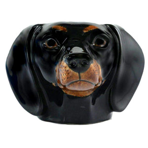 Animal Egg Cup Dachshund