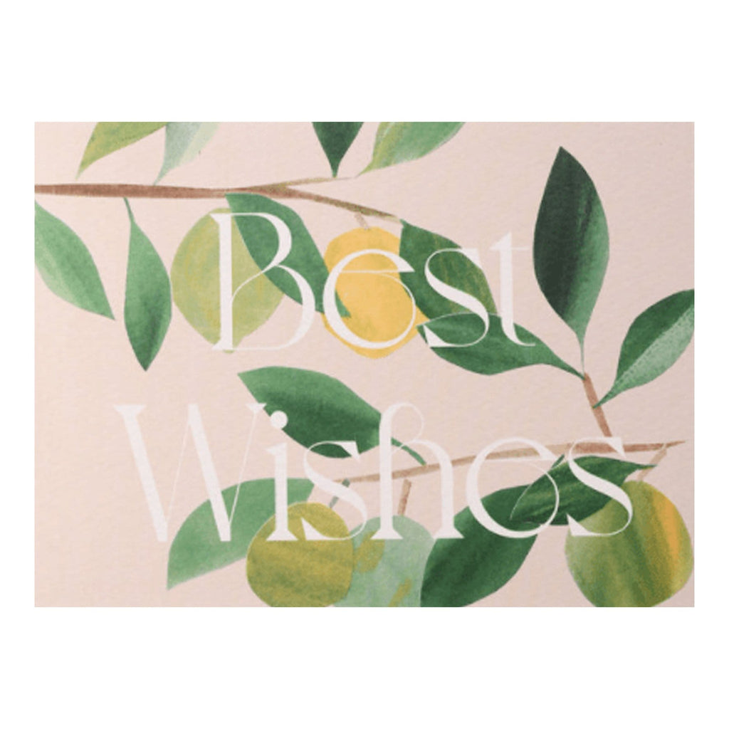 'Lime Tree Branches' Best Wishes Card