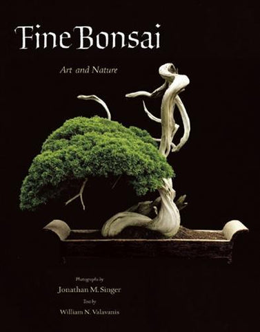 Fine Bonsai, Art and Nature