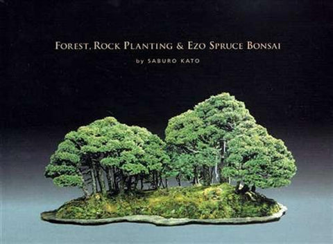 Forest, Rock Planting & Ezo Spruce Bonsai by Saburo Kato