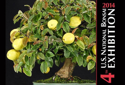 Commemorative Album, 4th U.S. National Bonsai Exhibition, 2014
