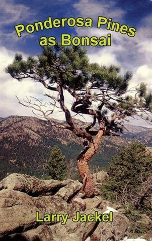 NOW 40% OFF - Ponderosa Pines as Bonsai