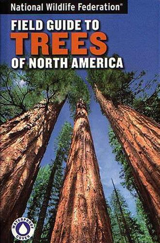 Field Guide to Trees of North America