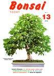 Bonsai Today 13 - Rare Out of Print