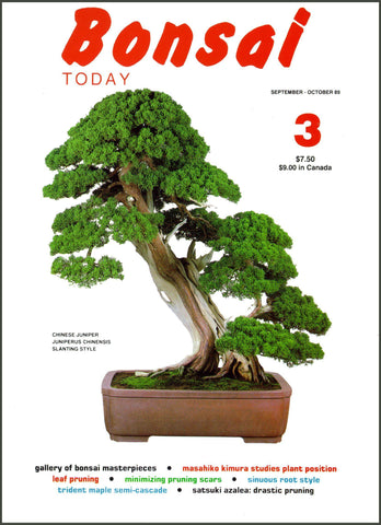 Bonsai Today 3 - Rare Out of Print
