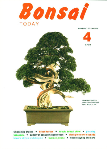 Bonsai Today 4 - Rare Out of Print