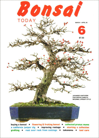 Bonsai Today 6 - Rare Out of Print