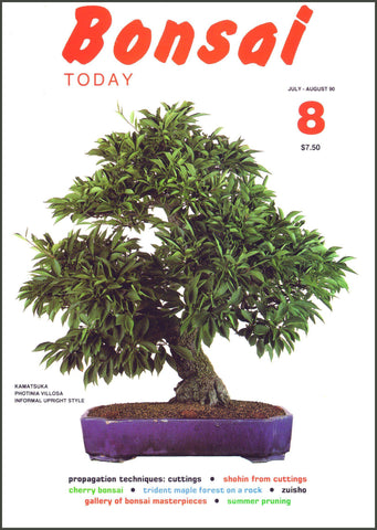 Bonsai Today 8 - Rare Out of Print